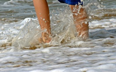 feet-1599888_1920